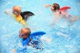 zwemfin